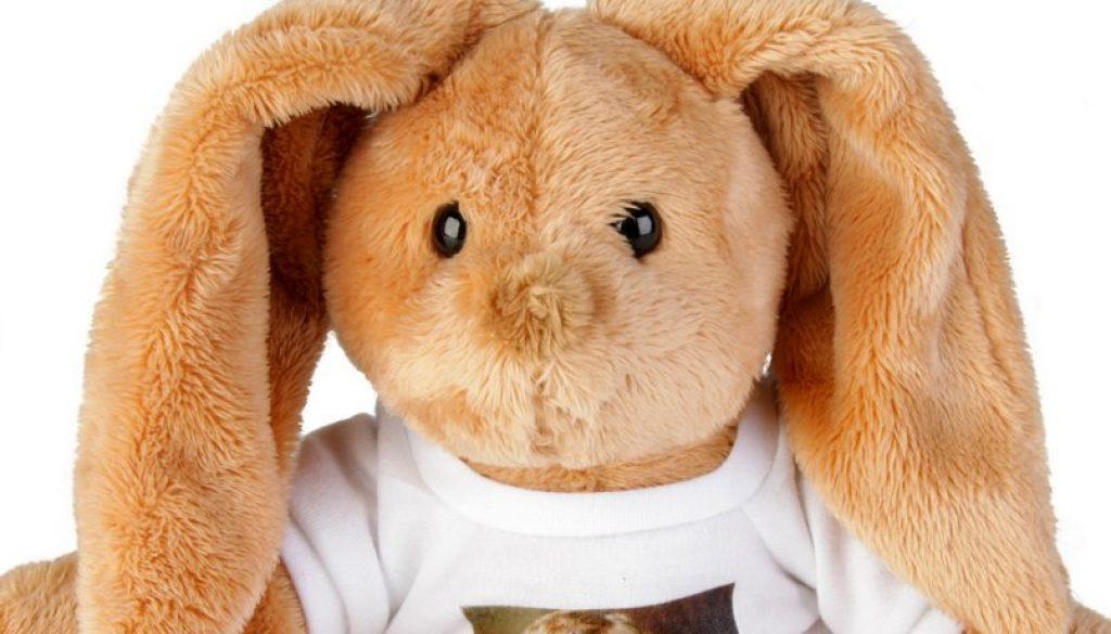 dflt_detpop_gft_games_bunny_03