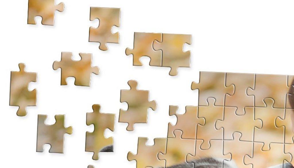 dflt_detpop_gft_games_puzzle_20x30_03