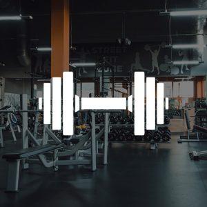 Gym- fitness